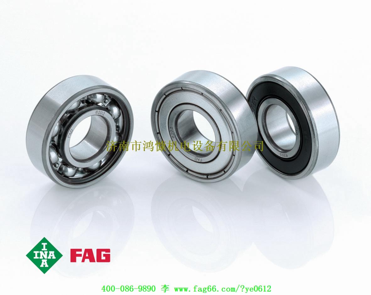 FAG轴承—深沟球轴承应用案例
